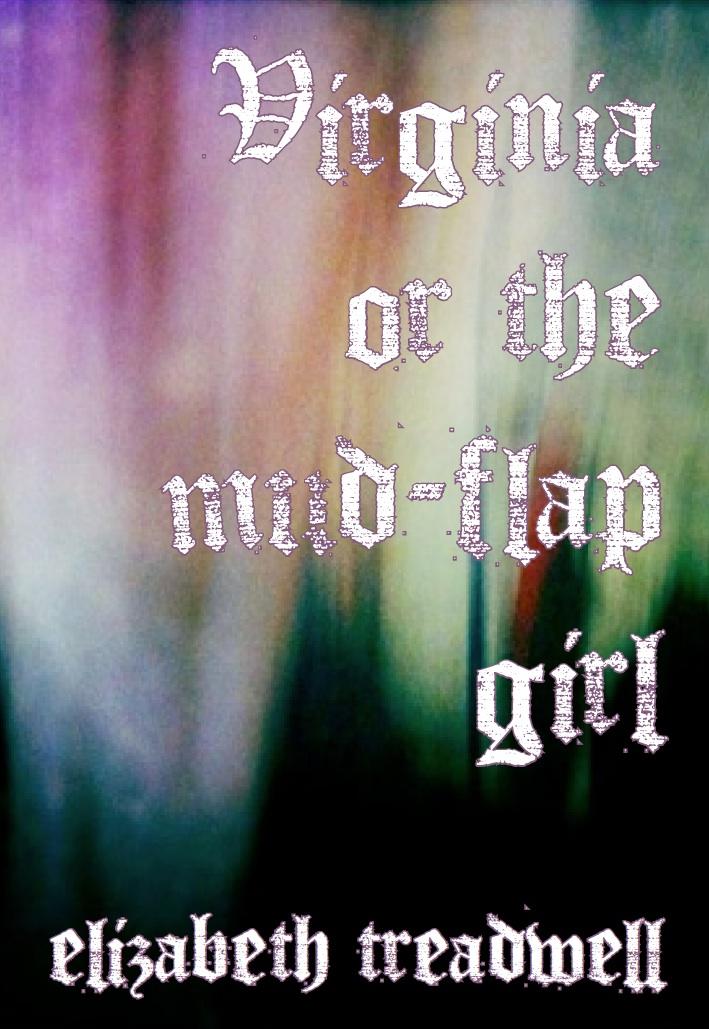 Virginia or the mud-flap                                           girl by Elizabeth Treadwell